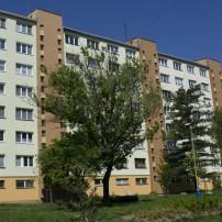 IMGP2105